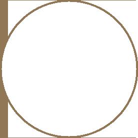activeMGMT